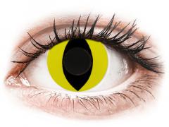 CRAZY LENS - Cat Eye Yellow - Tageslinsen ohne Stärke (2 Linsen)